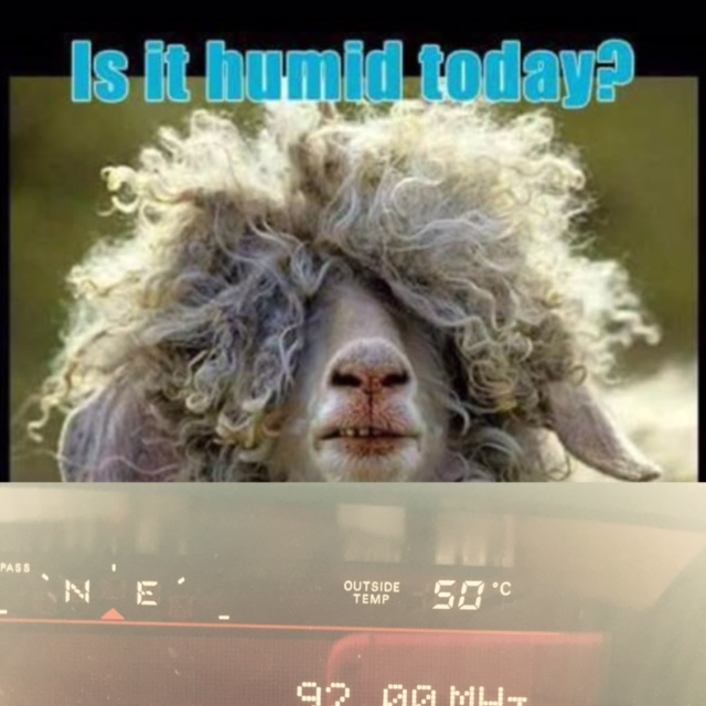 Is it humid today?